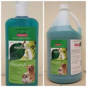 แชมพูสุนัข ท็อปเซนท์ topscent สุนัขกลิ่นตัวแรง มีกลิ่นสาบ